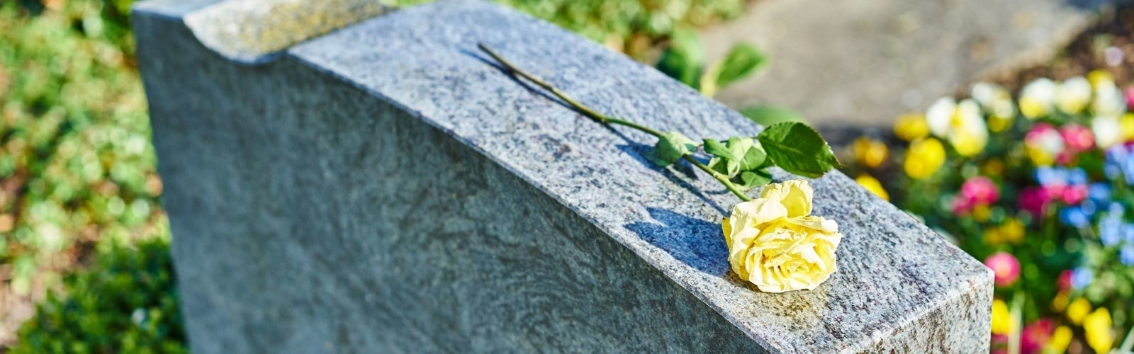Yellow rose resting on tombstone