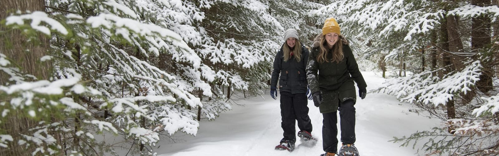 Two women snowshoeing in forest